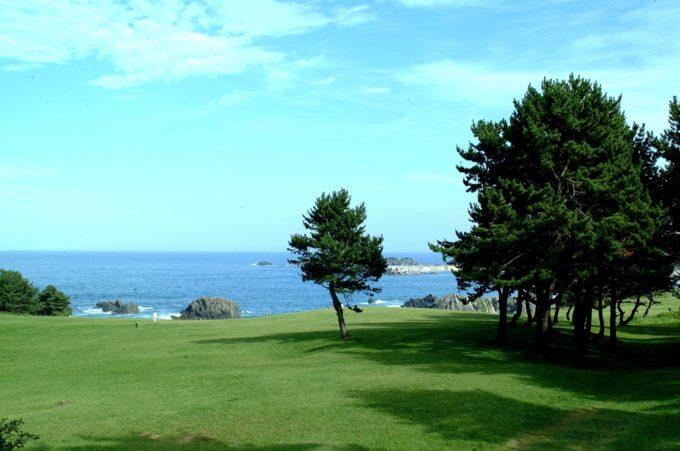 種差海岸のAC画像